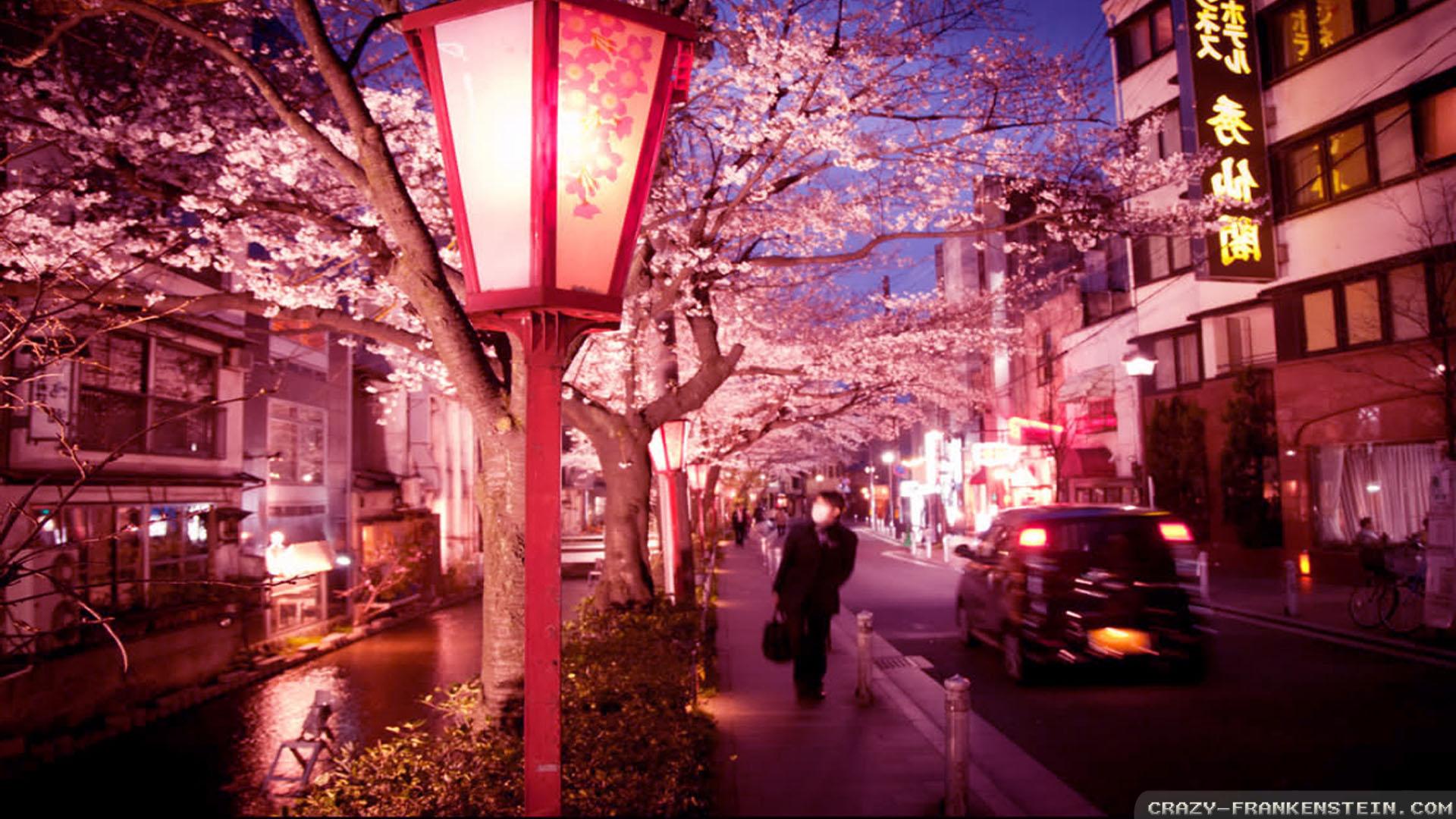 night-bloom-summer-in-japan-wallpapers-1920x1080